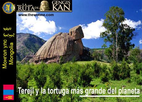 Terelj y la tortuga más grande del planeta - Terejl mongolia - Terelj y la tortuga más grande del planeta