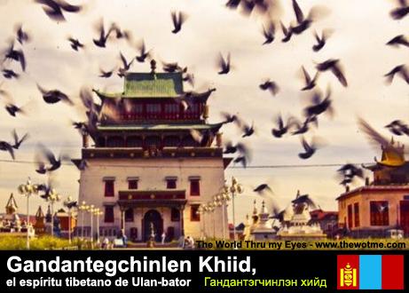 Gandantegchinlen Khiid, el espíritu tibetano de Ulan-bator - templo gandan ulanbator - Gandantegchinlen Khiid, el espíritu tibetano de Ulan-bator