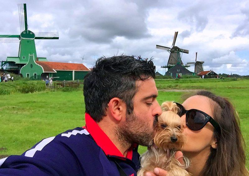 amsterdam con perro - portada amsterdam con perro 800x565 - Visitar Amsterdam con perro