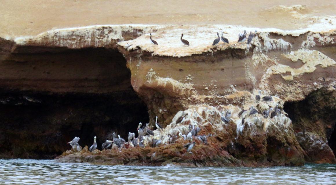 Qué ver en Paracas, Perú qué ver en paracas - IMG 0220 1160x641 - Qué ver en Paracas, Perú
