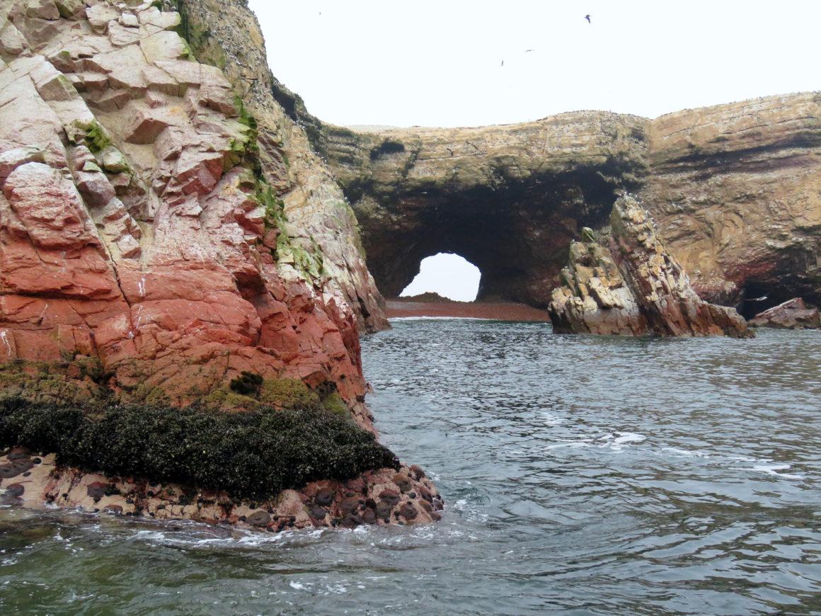 Qué ver en Paracas, Perú qué ver en paracas - IMG 0262 1160x870 - Qué ver en Paracas, Perú