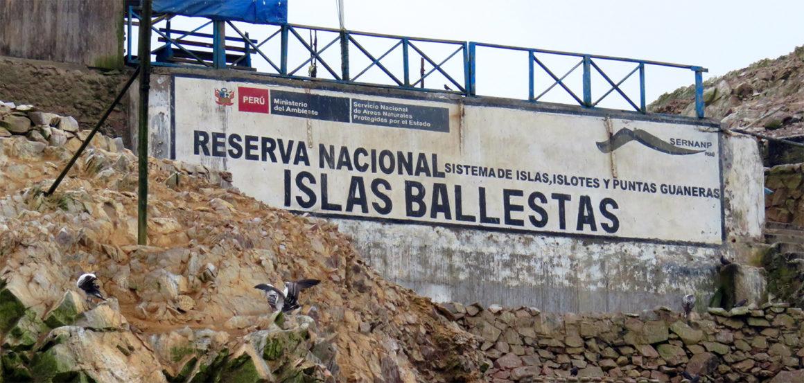 Qué ver en Paracas, Perú qué ver en paracas - IMG 0270 1160x553 - Qué ver en Paracas, Perú