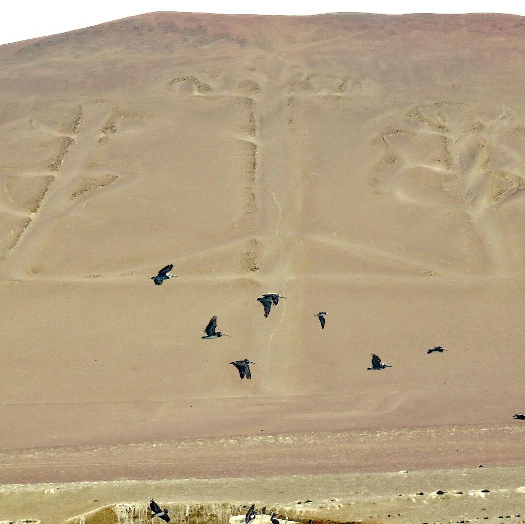 Qué ver en Paracas, Perú qué ver en paracas - IMG 9485 - Qué ver en Paracas, Perú