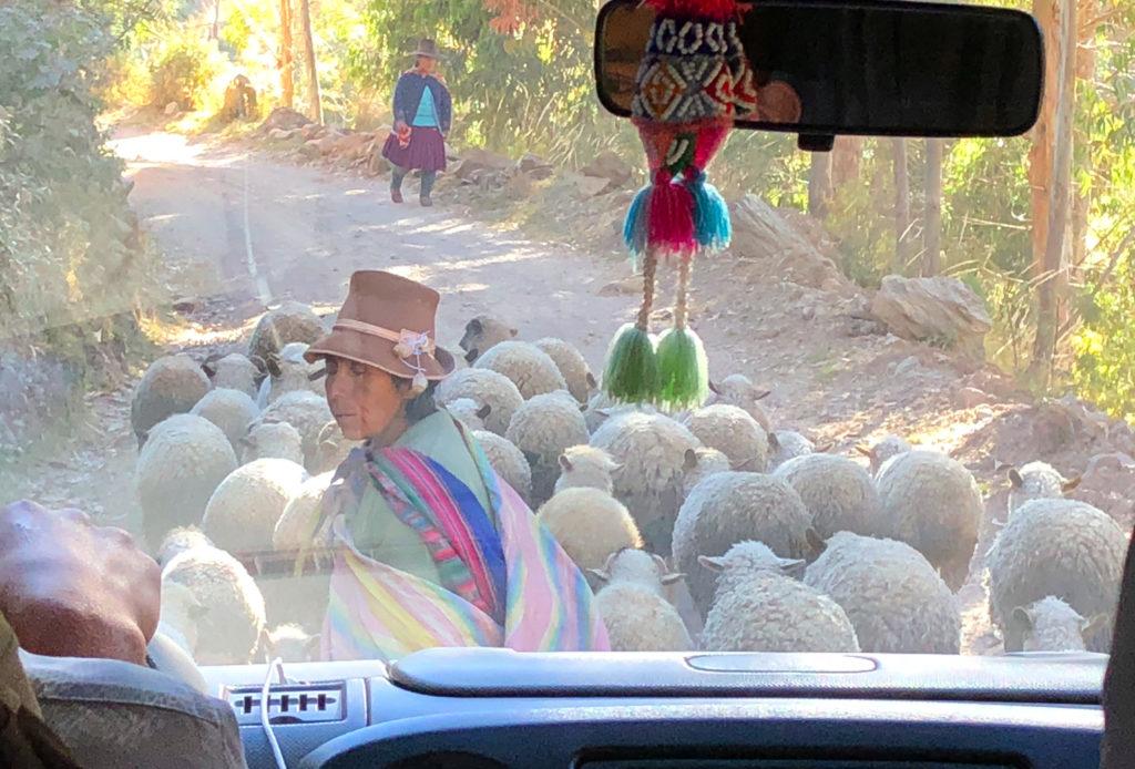 montaña arcoiris montaña arcoiris - montana colores palcoyo vinicunca peru cusco 08 1024x694 - Montaña Arcoiris de Perú, naturaleza multicolor