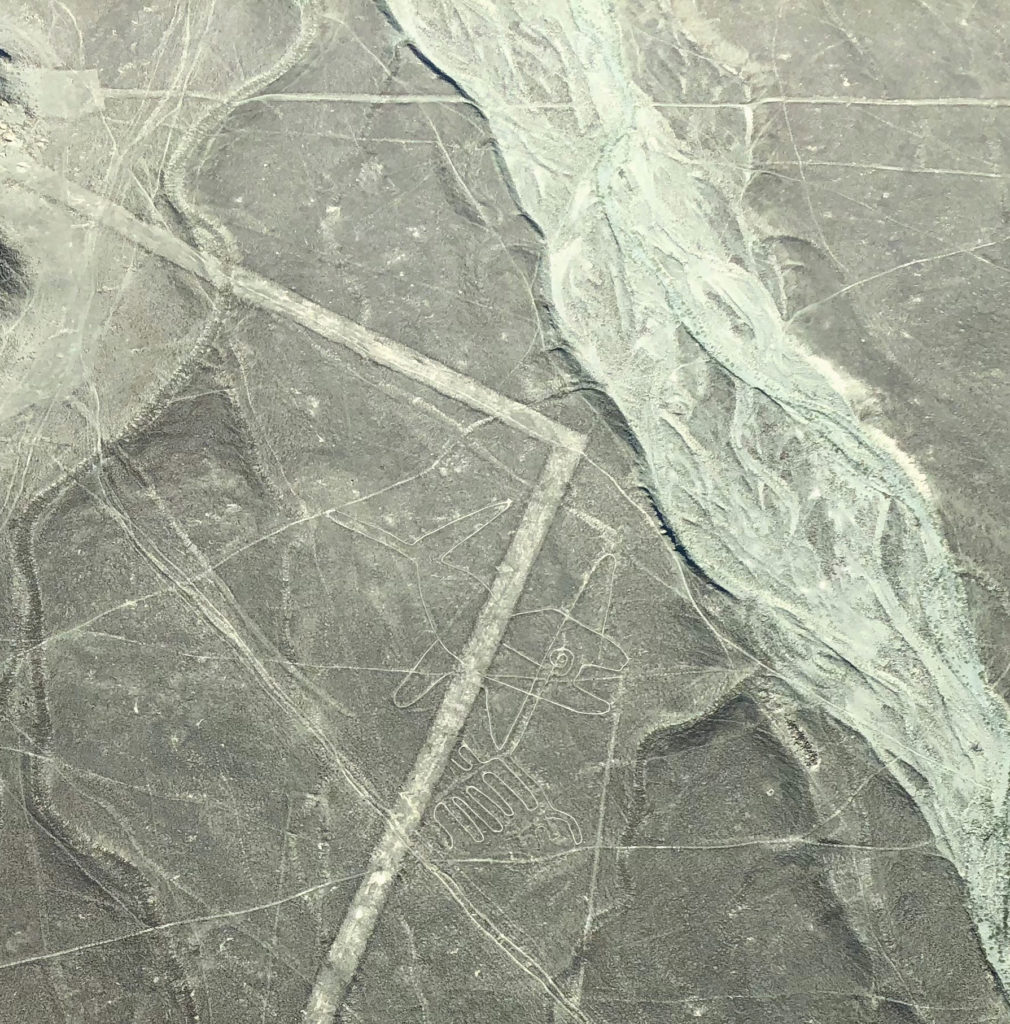 Líneas de Nazca líneas de nazca - sobrevolar las lineas de nazca nasca peru 03 1010x1024 - Sobrevolar las líneas de Nazca, una experiencia extraterrestre en Perú