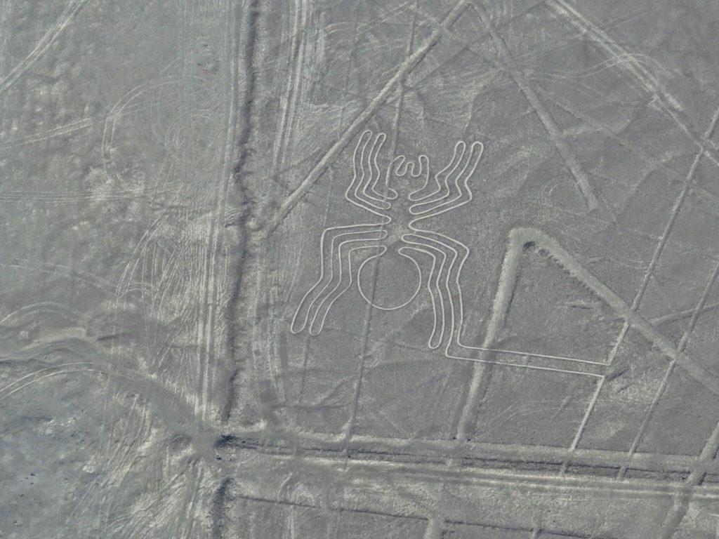 Líneas de Nazca líneas de nazca - sobrevolar las lineas de nazca nasca peru 18 1024x768 - Sobrevolar las líneas de Nazca, una experiencia extraterrestre en Perú