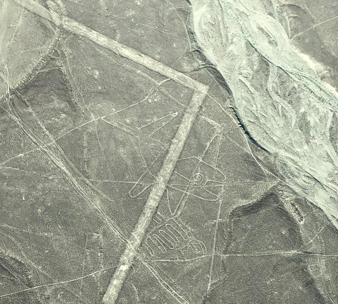 Líneas de Nazca ruta por perú en dos semanas - sobrevolar las lineas de nazca nasca peru 30 - Nuestra Ruta por Perú en dos semanas : Diario de Viaje a Perú