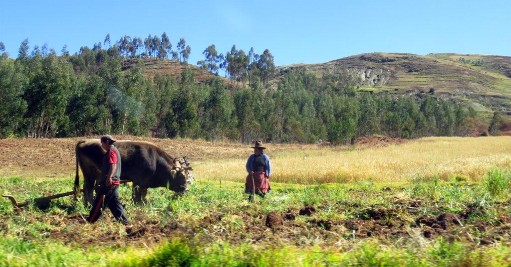 valle sagrado de los incas peru valle sagrado de los incas - valle sagrado de los incas peru 10 1024x536 - Valle Sagrado de los Incas en Perú