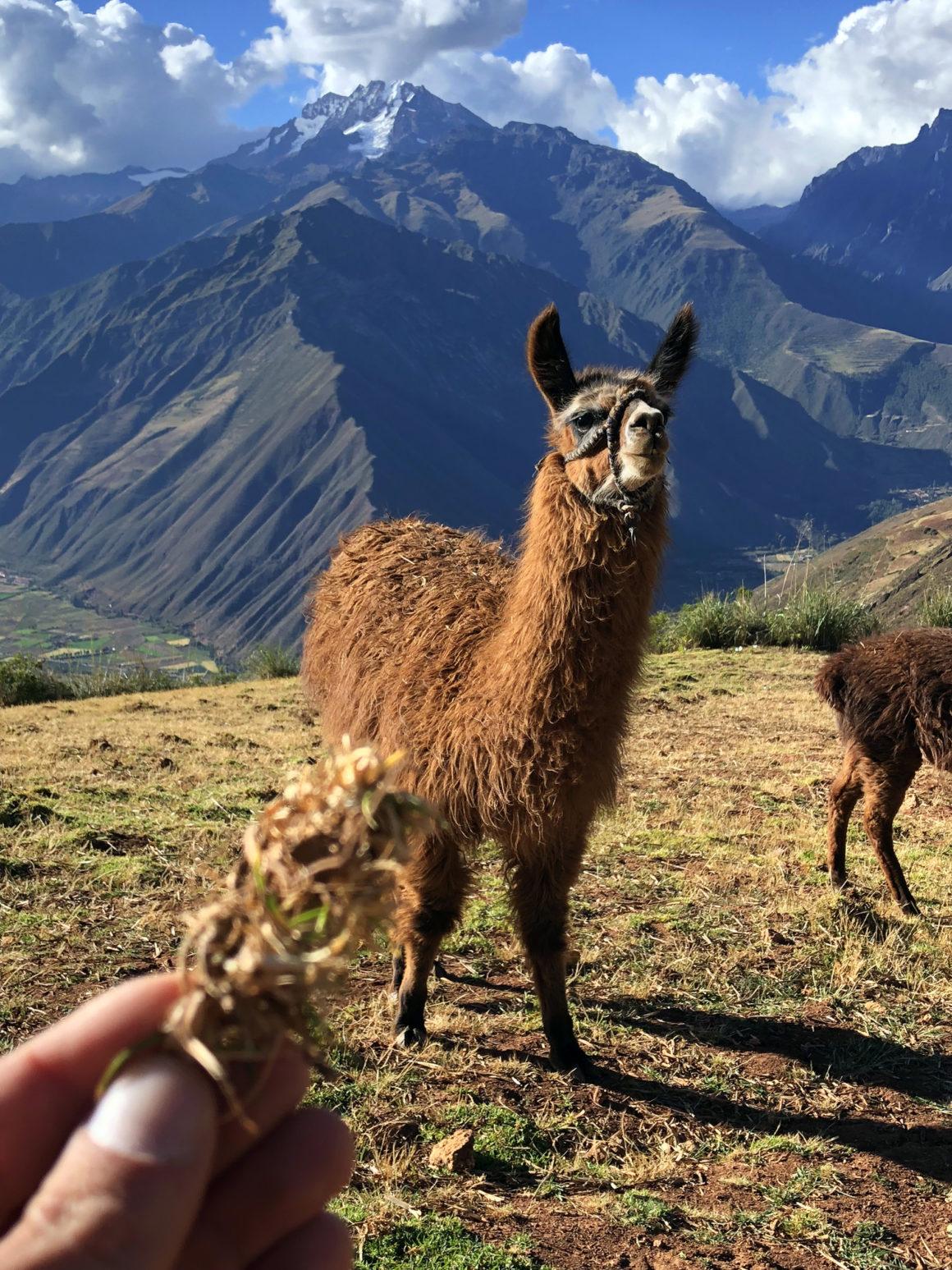 valle sagrado de los incas peru ruta por perú en dos semanas - valle sagrado de los incas peru 24 1160x1547 - Nuestra Ruta por Perú en dos semanas : Diario de Viaje a Perú