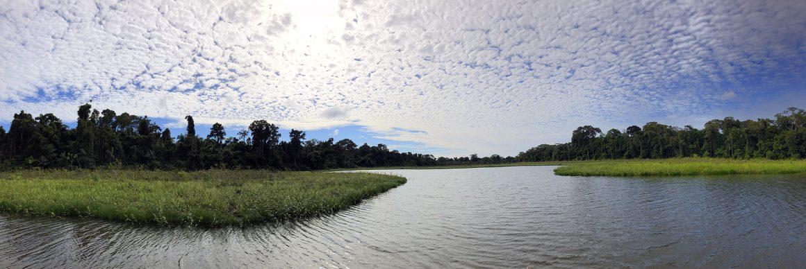 Puerto Maldonado Amazonas Peru ruta por perú en dos semanas - Puerto Maldonado Amazonas Peru 26 1160x388 - Nuestra Ruta por Perú en dos semanas : Diario de Viaje a Perú