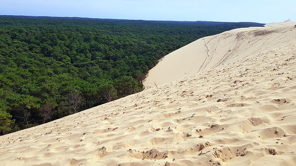 dune du pilat bourdeaux burdeos francia duna dune du pilat - dune du pilat bourdeaux burdeos francia duna 00 - Dune du Pilat, la duna de arena más alta de Europa