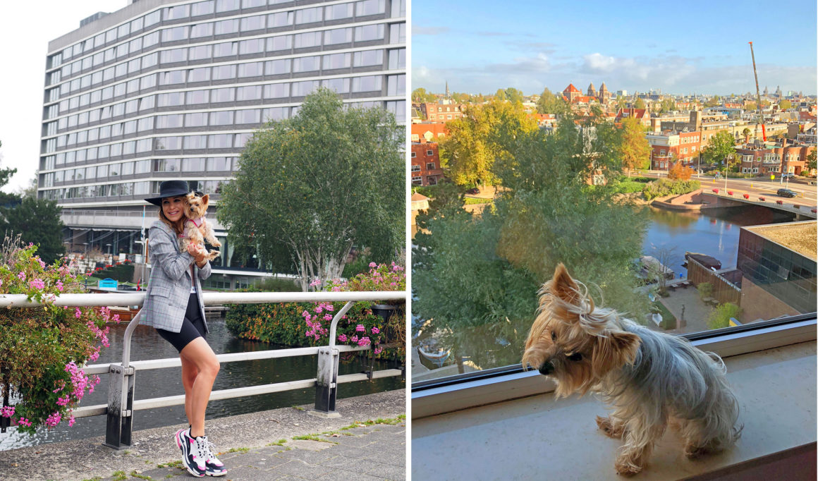 marathon maraton amsterdam hilton amsterdam - marathon maraton amsterdam 19 1160x682 - El emblemático Hotel Hilton Ámsterdam