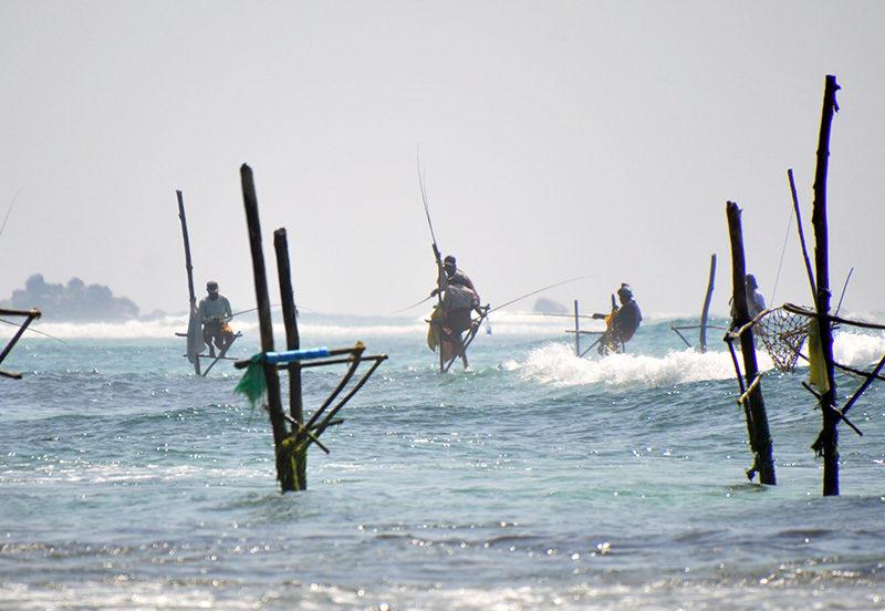 qué hacer en unawatuna - thewotme unawatuna sri lanka 800x552 - Qué hacer en Unawatuna, el paraíso de Sri Lanka