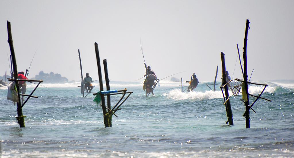 qué hacer en unawatuna - thewotme unawatuna sri lanka - Qué hacer en Unawatuna, el paraíso de Sri Lanka
