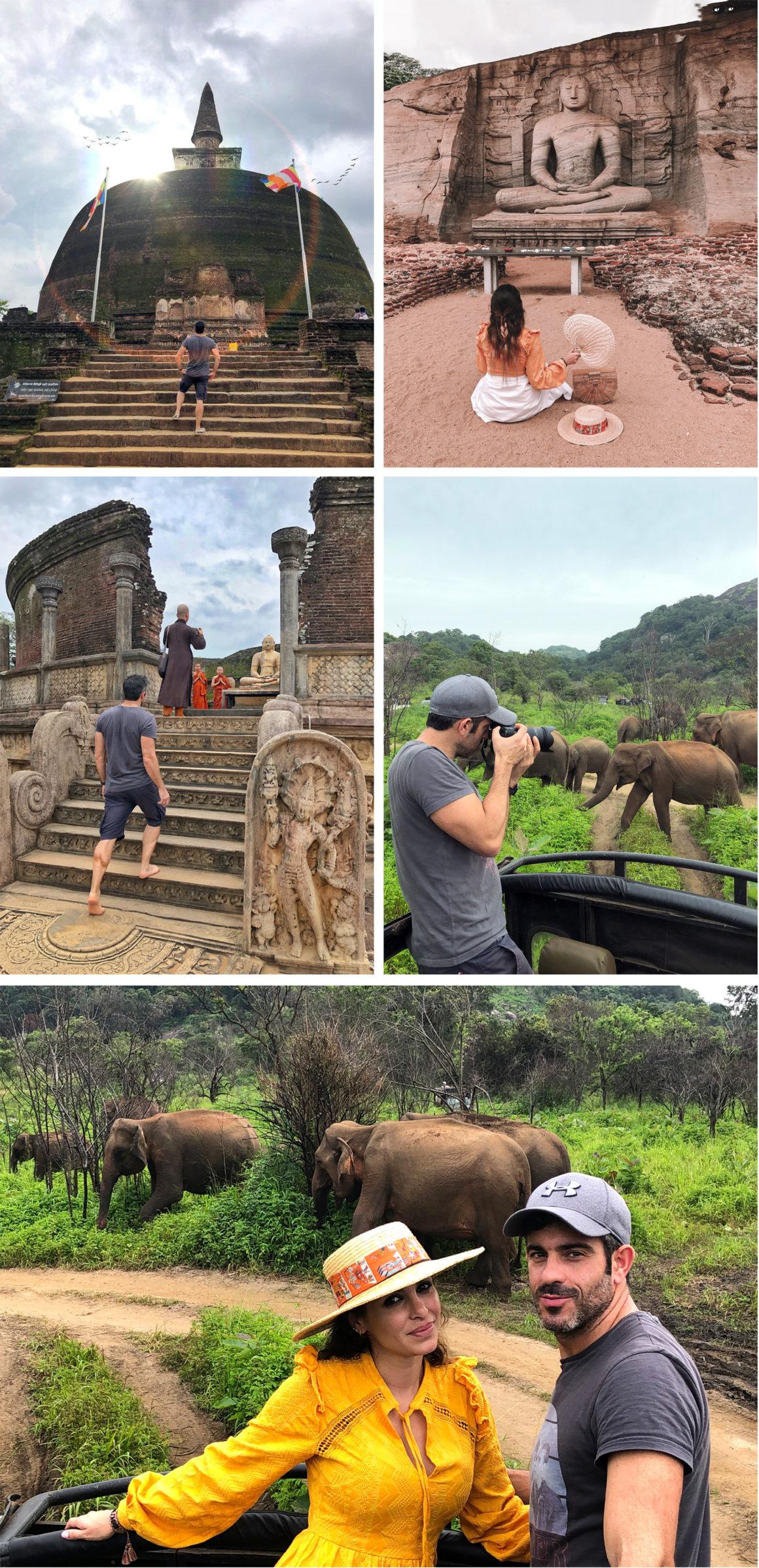 ruta por Sri Lanka en 8 días ruta por sri lanka en 8 días - thewotme polonnaruwa minneriya elefantes sri lanka 1160x2396 - Nuestra ruta por Sri Lanka en 8 días, diario de viaje