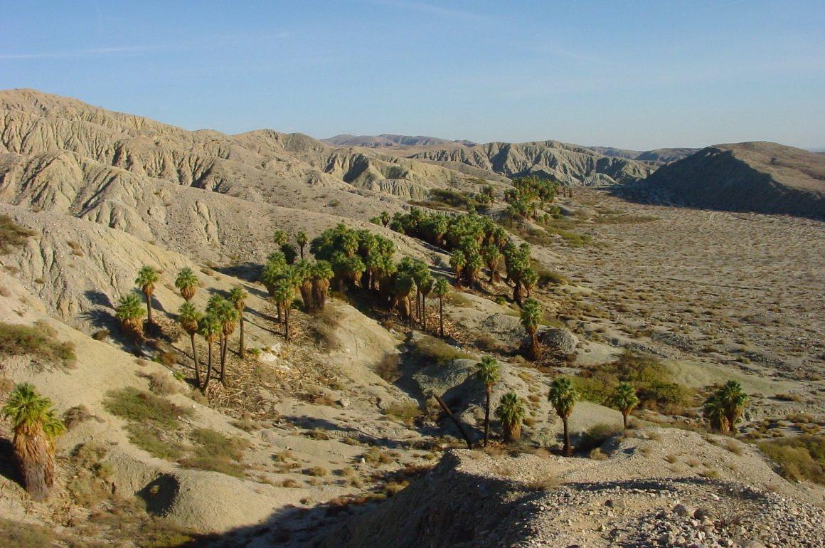 que hacer en Palm Springs, California, Coachella - Thewotme que hacer en palm springs - coachella valley 82231 1920 1160x770 - Las mejores cosas que hacer en Palm Springs